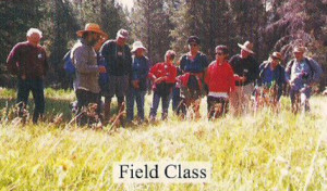 field_class