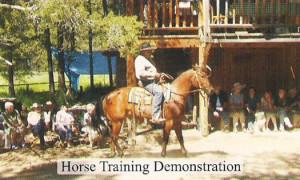 horse_training_demonstration